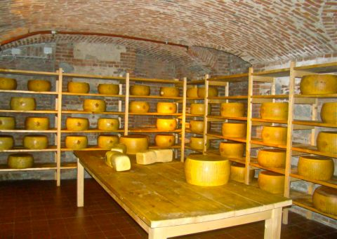 Turin_cheese